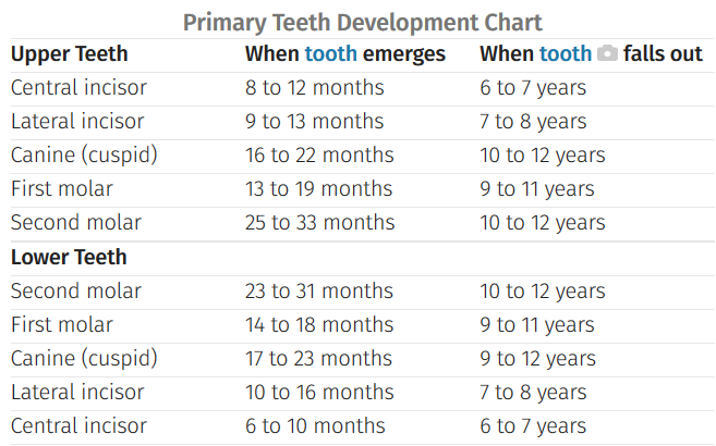 Teeth Archives Olympic Dental Denture